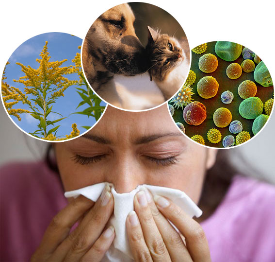allergies5